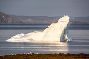 IcebergTwillingate-01